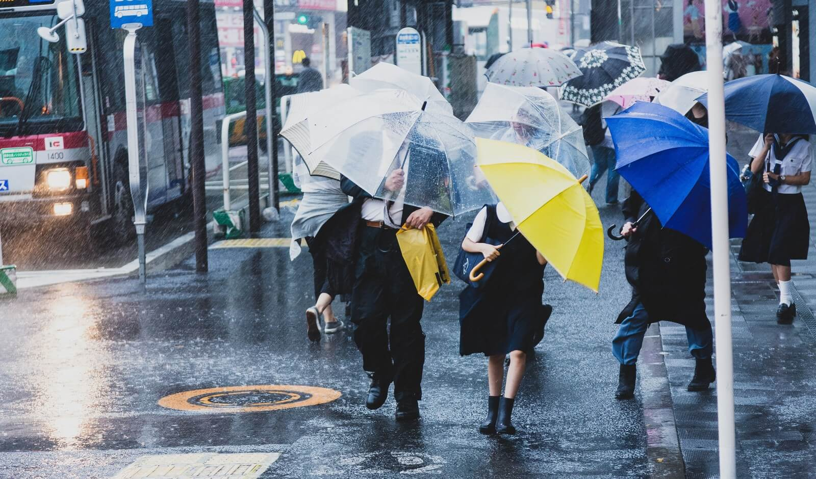 Japanese rainy goods